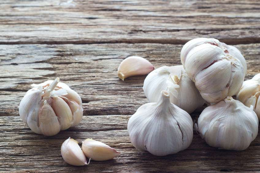 Naturally Botanicals-Allium sativum-Garlic