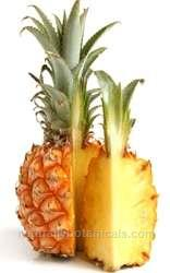 Browse by Ingredient @naturallybotanicals.com - Bromelain